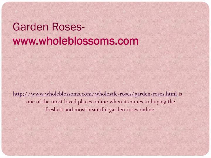 Garden Roses-