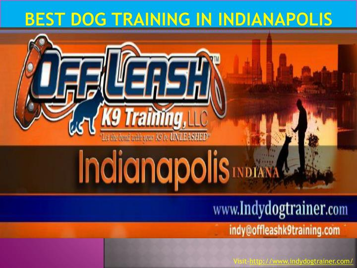 Best dog training in indianapolis