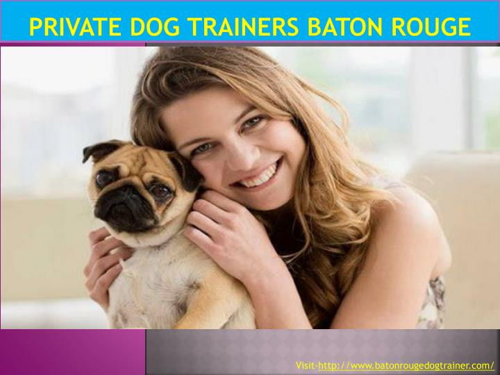 Private dog trainers baton rouge