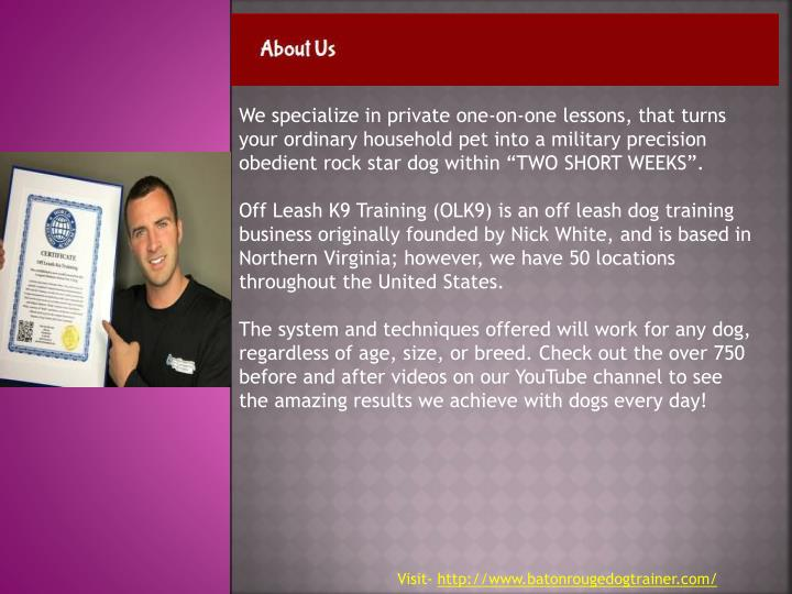 """We specialize in private one-on-one lessons, that turns your ordinary household pet into a military precision obedient rock star dog within """"TWO SHORT WEEKS"""