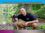 cheap dog trainers northern virginia