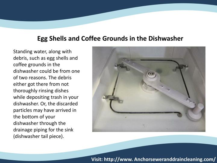 Egg Shells and Coffee Grounds in the Dishwasher