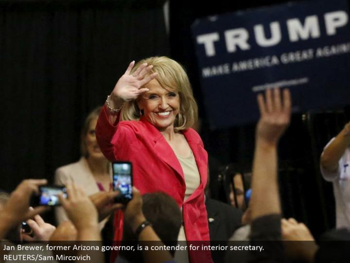 Jan Brewer, previous Arizona representative, is a contender for inside secretary. REUTERS/Sam Mircovich