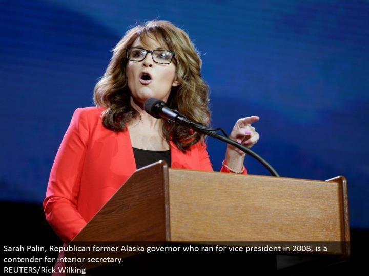Sarah Palin, Republican previous Alaska senator who kept running for VP in 2008, is a contender for inside secretary. REUTERS/Rick Wilking