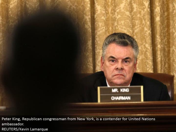Peter King, Republican congressman from New York, is a contender for United Nations minister. REUTERS/Kevin Lamarque