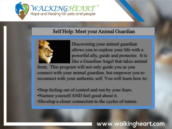 Self Help: Meet your Animal Guardian