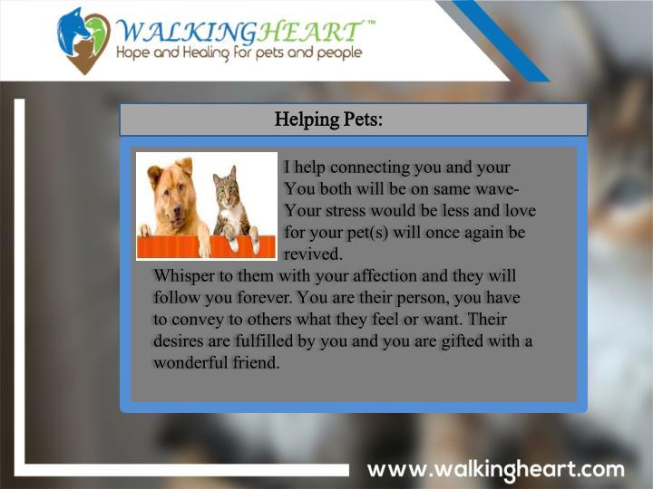 Helping Pets: