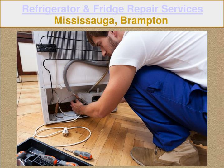 Refrigerator & Fridge Repair Services