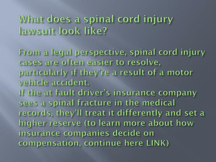 What does a spinal cord injury lawsuit look like