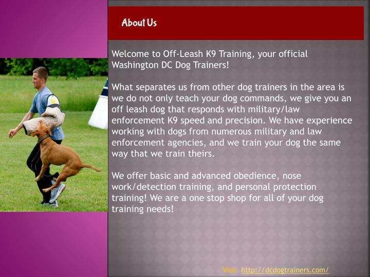 Welcome to Off-Leash K9 Training, your official Washington DC Dog Trainers!