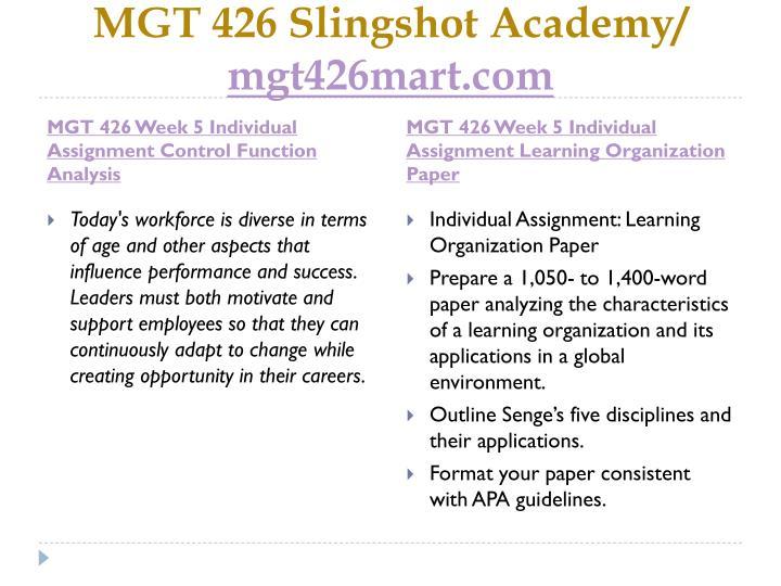 MGT 426 Slingshot Academy/