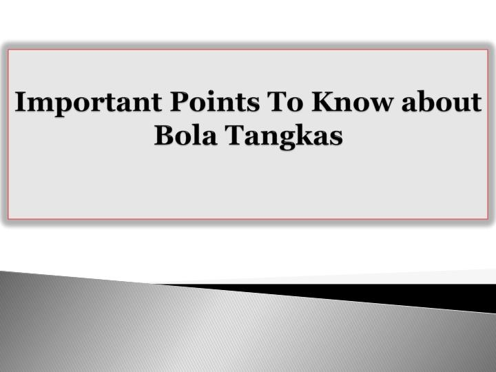 Important points to know about bola tangkas
