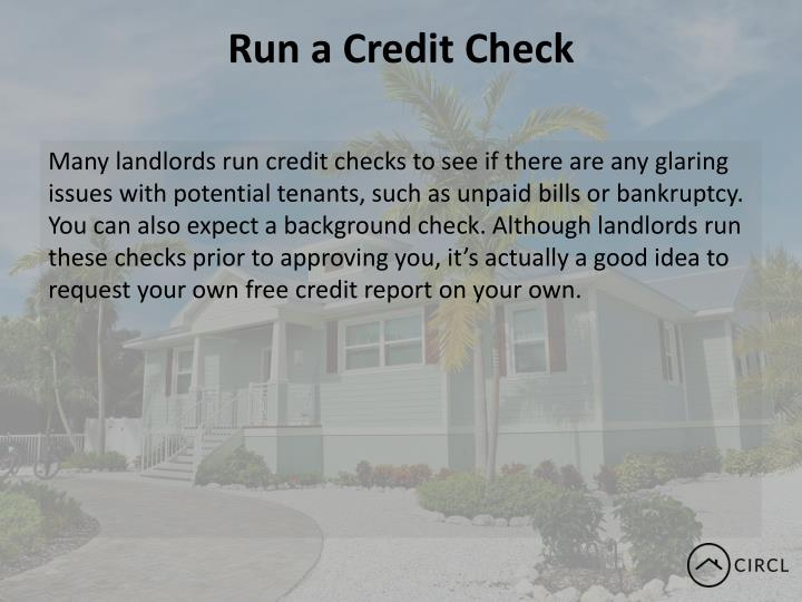 Run a Credit Check