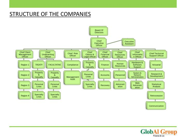 STRUCTURE OF THE COMPANIES