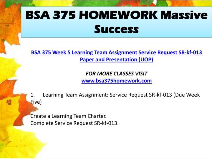 BSA 375 HOMEWORK Massive Success