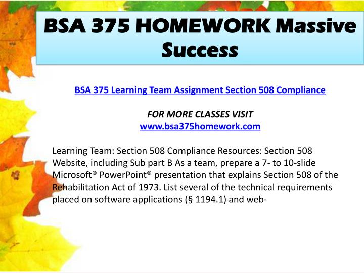 BSA 375 HOMEWORK Massive Success