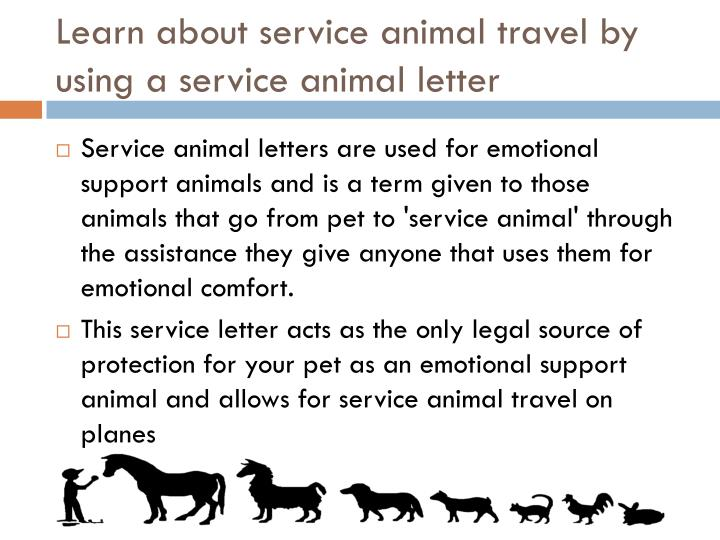 Learn about service animal travel by using a service animal letter