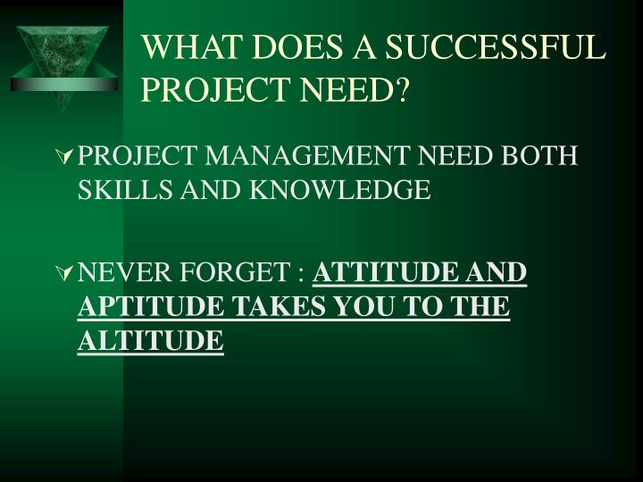 WHAT DOES A SUCCESSFUL PROJECT NEED?