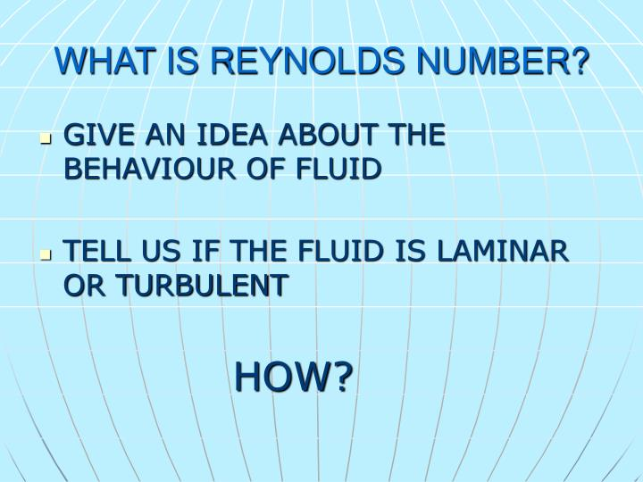 WHAT IS REYNOLDS NUMBER?
