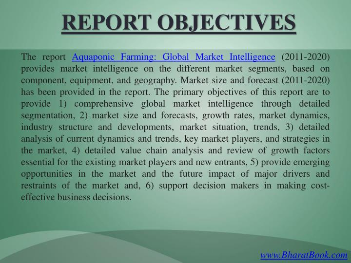 Report objectives