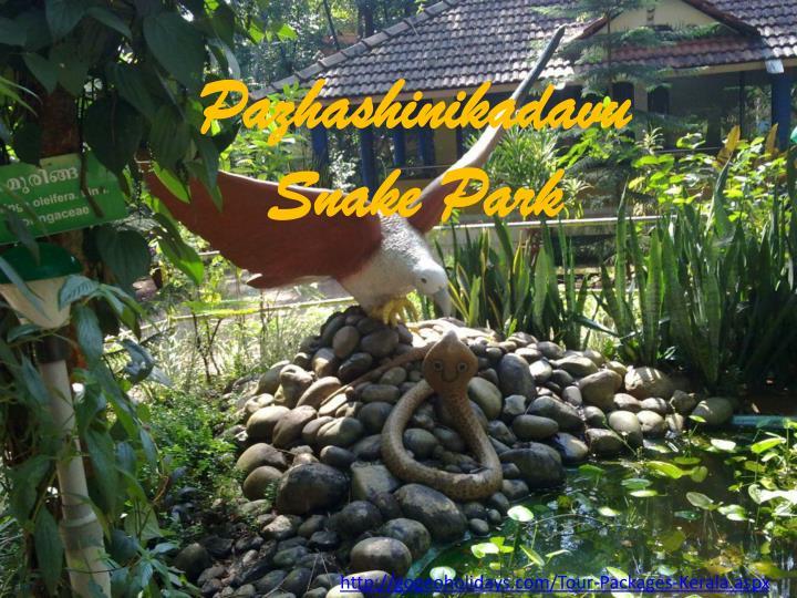 Pazhashinikadavu Snake Park
