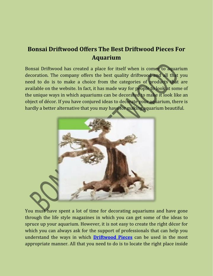Bonsai Driftwood Offers The Best Driftwood Pieces For