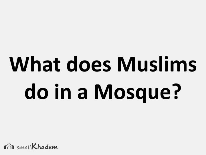 What does Muslims