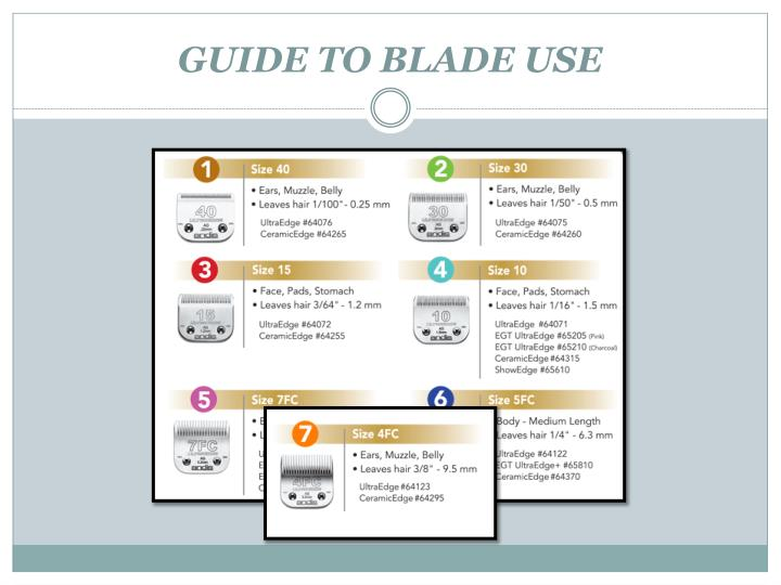 GUIDE TO BLADE USE
