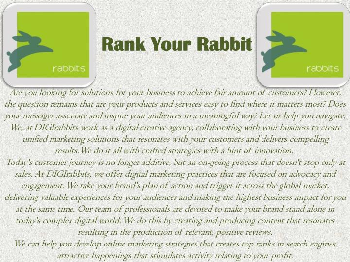 Rank Your Rabbit