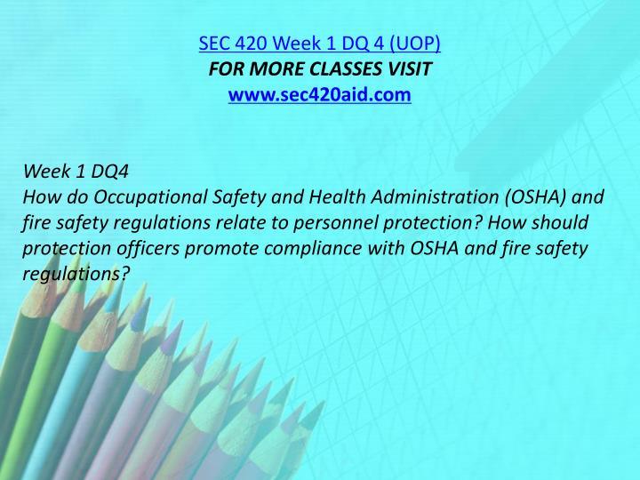 SEC 420 Week 1 DQ 4 (UOP)