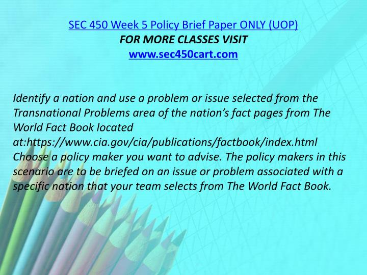 SEC 450 Week 5 Policy Brief Paper ONLY (UOP)
