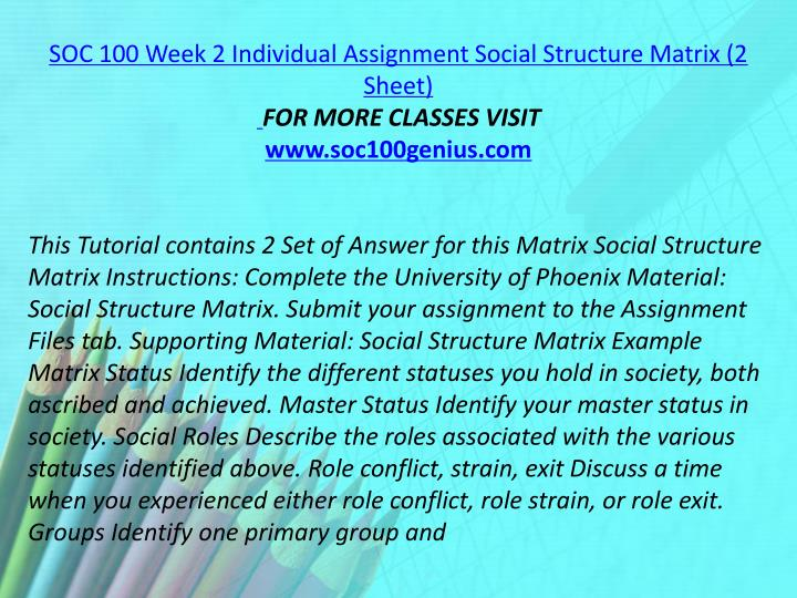 SOC 100 Week 2 Individual Assignment Social Structure Matrix (2 Sheet)