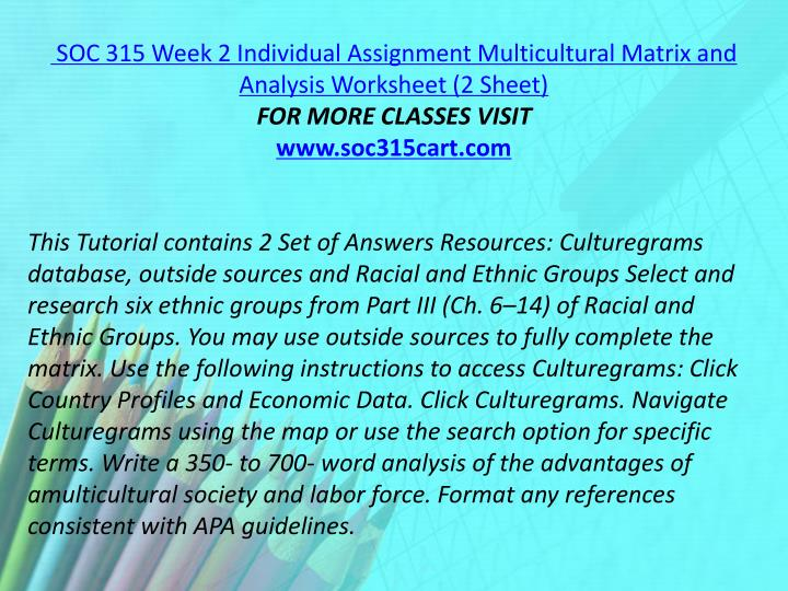 SOC 315 Week 2 Individual Assignment Multicultural Matrix and Analysis Worksheet (2 Sheet)
