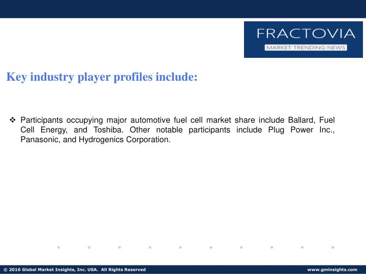Key industry player profiles include: