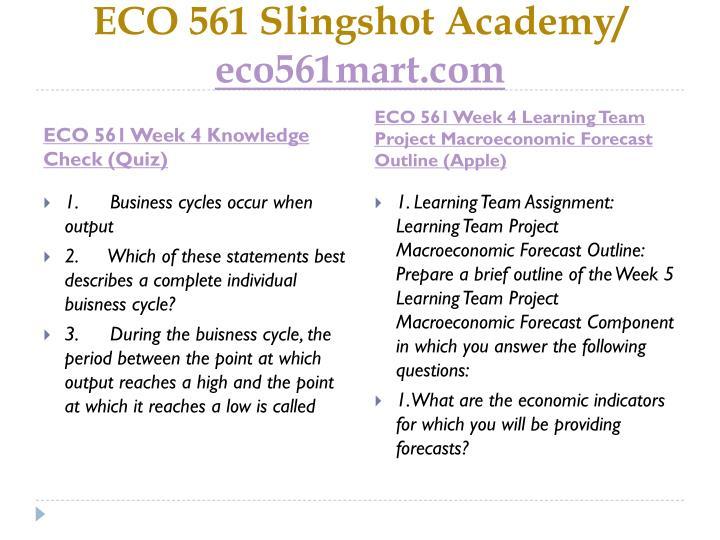 ECO 561 Slingshot Academy/