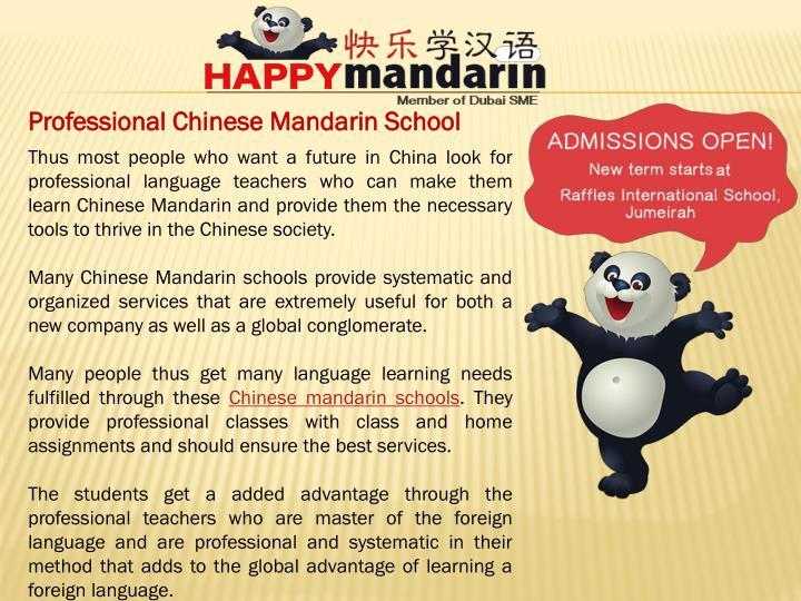 Professional Chinese Mandarin School