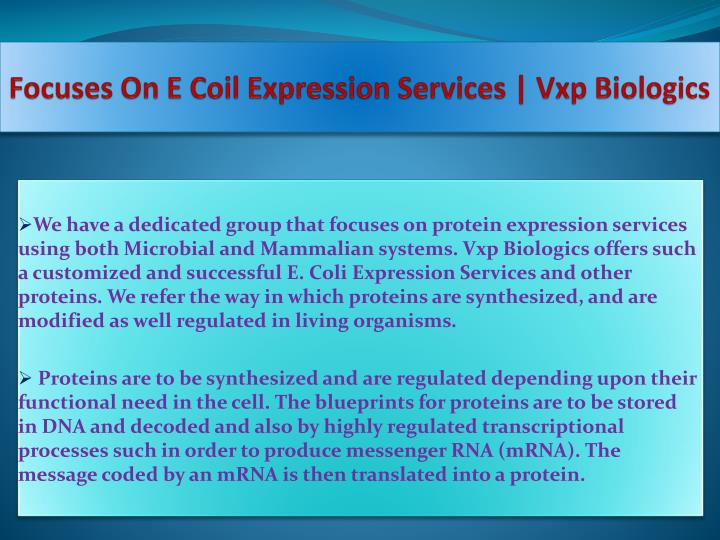 Focuses On E Coil Expression Services |