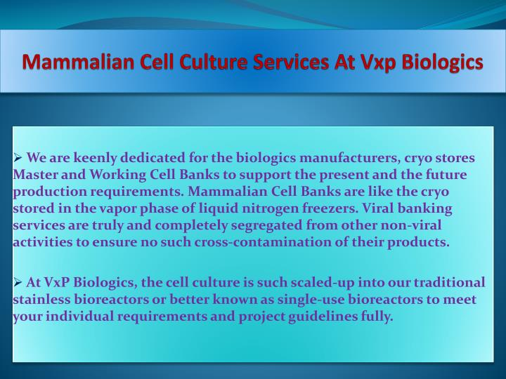Mammalian cell culture services at vxp biologics