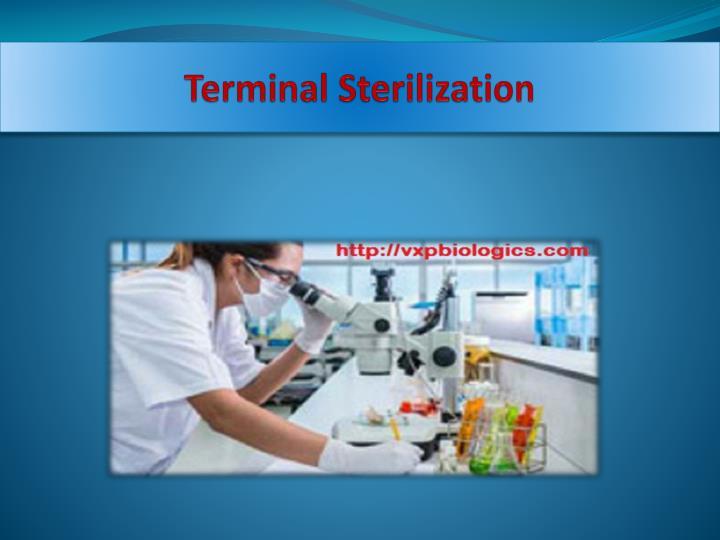 Terminal Sterilization