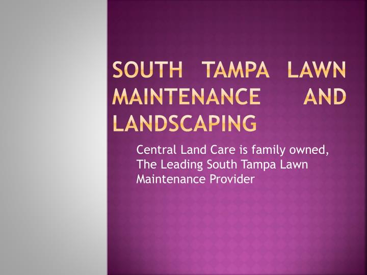 South tampa lawn maintenance and landscaping