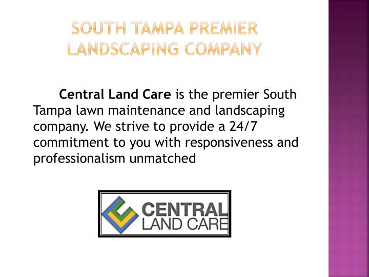 South tampa premier landscaping company