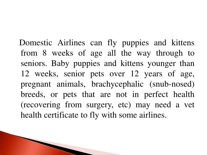 Domestic Airlines can fly puppies and kittens from 8 weeks of age all the way through to seniors. Baby puppies and kittens younger than 12 weeks, senior pets over 12 years of age, pregnant animals,