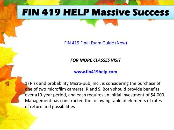 FIN 419 HELP Massive Success