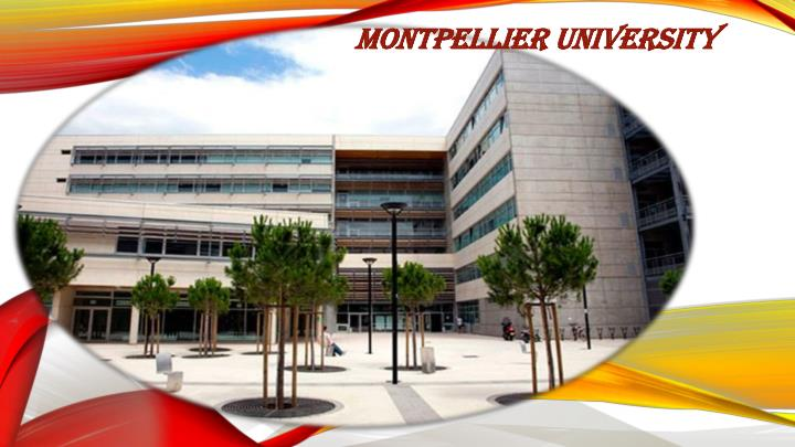 Montpellier University