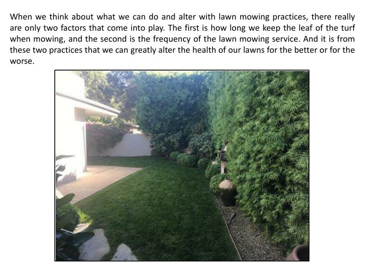When we think about what we can do and alter with lawn mowing practices, there really are only two factors that come into play. The first is how long we keep the leaf of the turf when mowing, and the second is the frequency of the lawn mowing service. And it is from these two practices that we can greatly alter the health of our lawns for the better or for the worse.