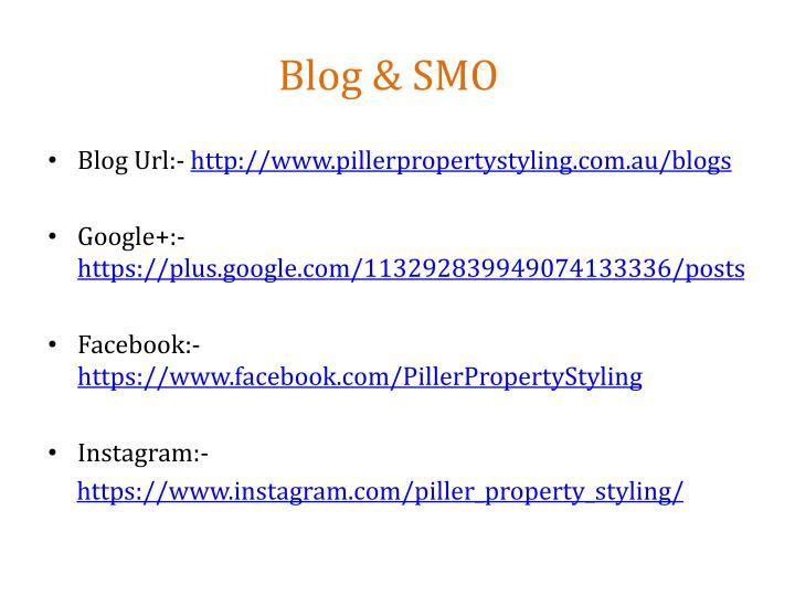 Blog & SMO