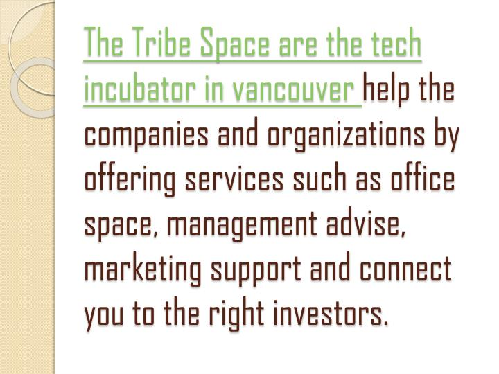 The Tribe Space are the tech incubator in
