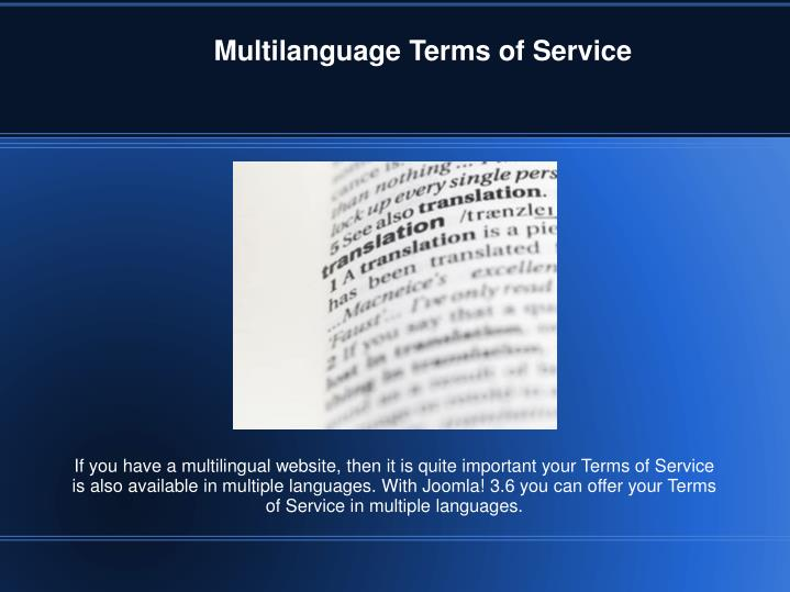 Multilanguage Terms of Service