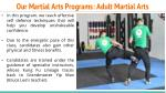our martial arts programs adult martial arts