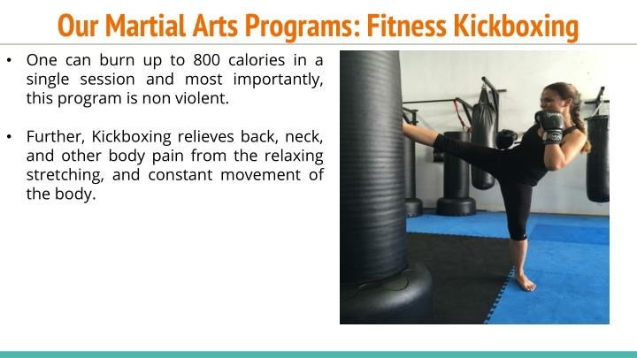 Our Martial Arts Programs: Fitness